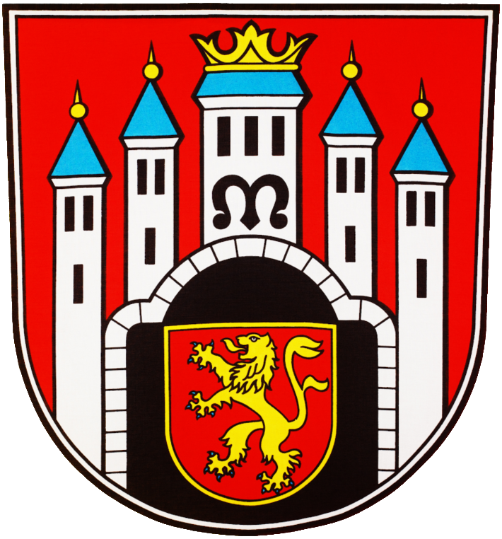 Tobias Dannenberg - Bürgermeisterkandidat für Hann. Münden Logo